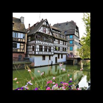 Job-Dating-Maintenance-Strasbourg-10-septembre-2020